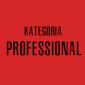 Nagrody – kat. PROFESSIONAL